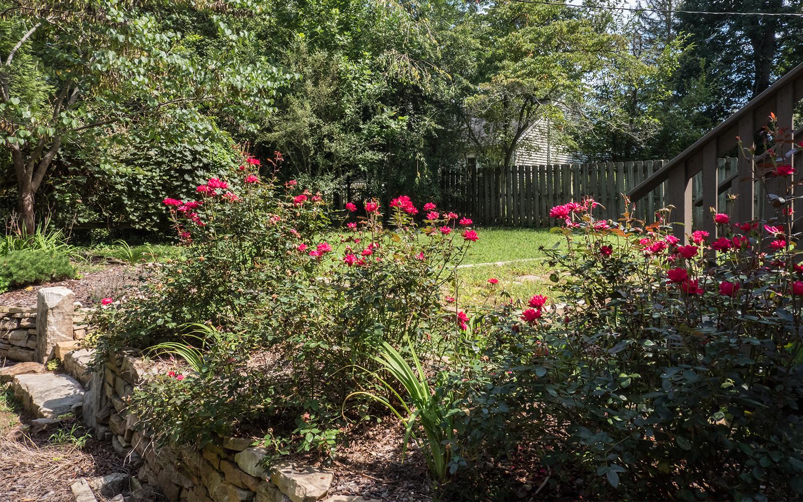 Guest house backyard